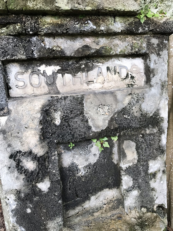 Community Clean Up At Southlands Bermuda July 2019 (1)