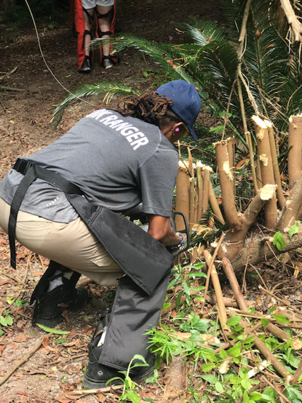 Community Clean Up At Southlands Bermuda July 2019 (4)