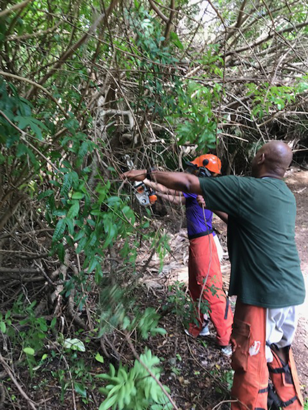 Community Clean Up At Southlands Bermuda July 2019 (5)