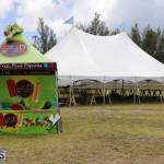 Cup Match Preparations Bermuda July 31 2019 (35)