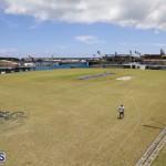Cup Match Preparations Bermuda July 31 2019 (6)