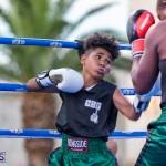 Epic Entertainment Fight Night Bermuda, June 29 2019-6927