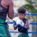Epic Entertainment Fight Night Bermuda, June 29 2019-6929