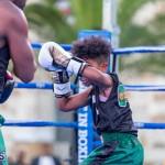 Epic Entertainment Fight Night Bermuda, June 29 2019-6930