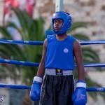 Epic Entertainment Fight Night Bermuda, June 29 2019-7033