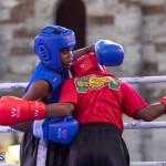Epic Entertainment Fight Night Bermuda, June 29 2019-7063