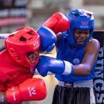 Epic Entertainment Fight Night Bermuda, June 29 2019-7100
