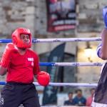 Epic Entertainment Fight Night Bermuda, June 29 2019-7104