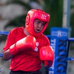 Epic Entertainment Fight Night Bermuda, June 29 2019-7147