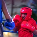 Epic Entertainment Fight Night Bermuda, June 29 2019-7185