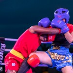Epic Entertainment Fight Night Bermuda, June 29 2019-7231