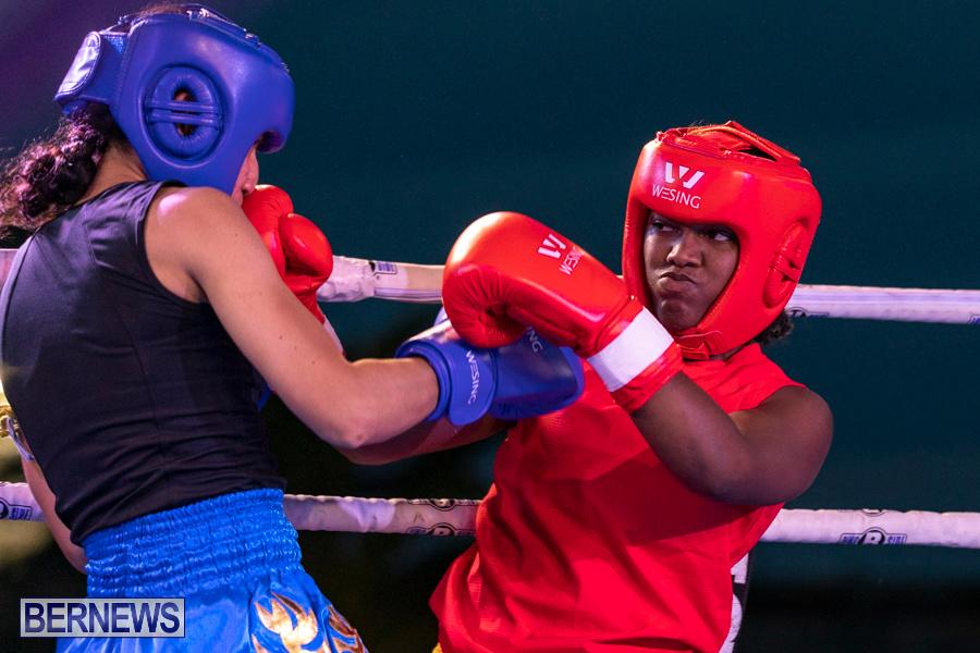 Epic-Entertainment-Fight-Night-Bermuda-June-29-2019-7264