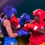 Epic Entertainment Fight Night Bermuda, June 29 2019-7265