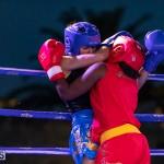 Epic Entertainment Fight Night Bermuda, June 29 2019-7275
