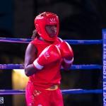 Epic Entertainment Fight Night Bermuda, June 29 2019-7432