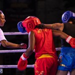 Epic Entertainment Fight Night Bermuda, June 29 2019-7452