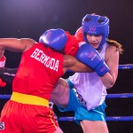 Epic Entertainment Fight Night Bermuda, June 29 2019-7827