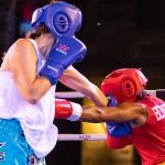 Epic Entertainment Fight Night Bermuda, June 29 2019-7850