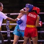 Epic Entertainment Fight Night Bermuda, June 29 2019-7875
