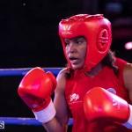 Epic Entertainment Fight Night Bermuda, June 29 2019-7878