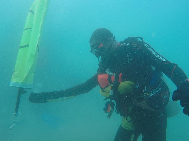 Bermuda-Sub-Aqua-Club-Aug-2019-3