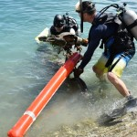 Bermuda Sub Aqua Club August 2019 (11)