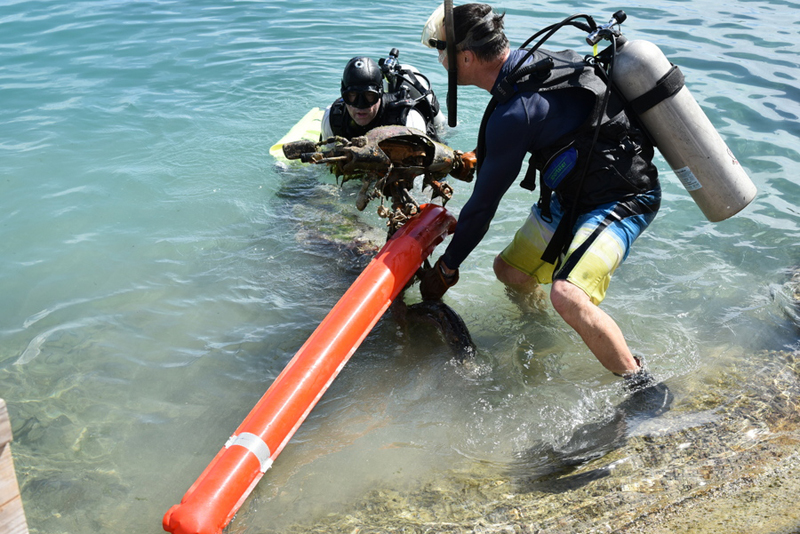 Bermuda-Sub-Aqua-Club-August-2019-11