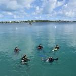 Bermuda Sub Aqua Club August 2019 (13)