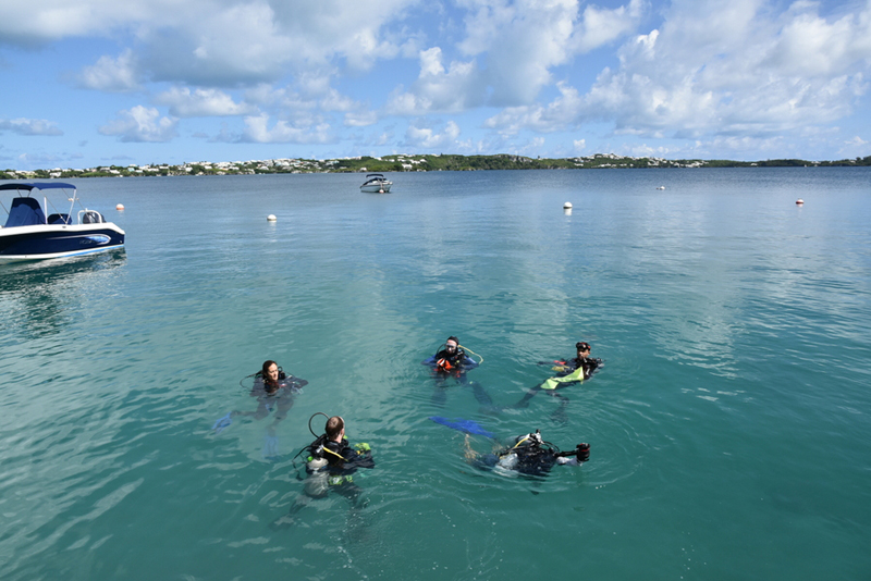 Bermuda-Sub-Aqua-Club-August-2019-13