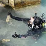 Bermuda Sub Aqua Club August 2019 (17)