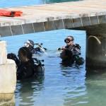 Bermuda Sub Aqua Club August 2019 (19)