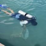 Bermuda Sub Aqua Club August 2019 (4)