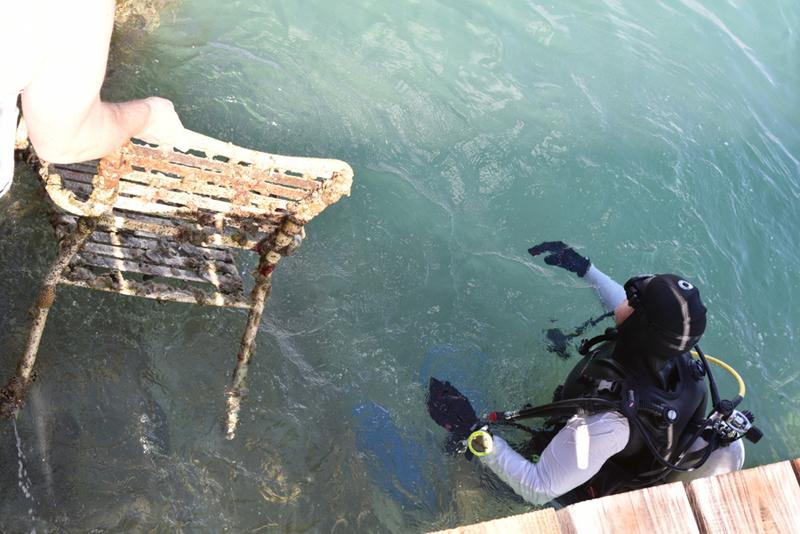 Bermuda-Sub-Aqua-Club-August-2019-5