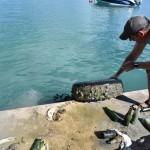 Bermuda Sub Aqua Club August 2019 (6)