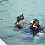 Bermuda Sub Aqua Club August 2019 (7)