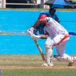 Cup Match Friday Bermuda, August 2 2019-0708
