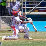 Cup Match Friday Bermuda, August 2 2019-0758