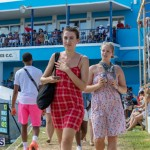 Cup Match Friday Bermuda, August 2 2019-1395