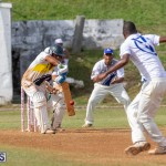 Eastern County Cricket Bermuda, August 17 2019-9149