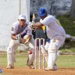 Eastern County Cricket Bermuda, August 17 2019-9291