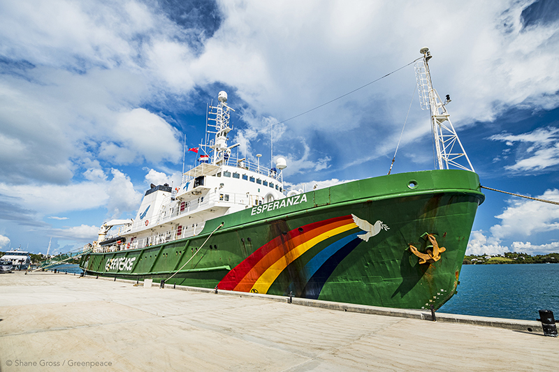 Greenpeace Bermuda Aug 2019