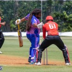 ICC Americas T20 World Cup Qualifier Bermuda vs Canada Cricket, August 19 2019-1379