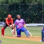 ICC Americas T20 World Cup Qualifier Bermuda vs Canada Cricket, August 19 2019-1466
