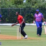 ICC Americas T20 World Cup Qualifier Bermuda vs Canada Cricket, August 19 2019-1489