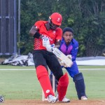 ICC Americas T20 World Cup Qualifier Bermuda vs Canada Cricket, August 19 2019-1730