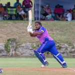 ICC Americas T20 World Cup Qualifier Bermuda vs Cayman Islands Cricket, August 25 2019-2733