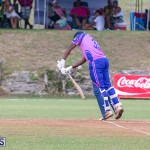 ICC Americas T20 World Cup Qualifier Bermuda vs Cayman Islands Cricket, August 25 2019-2749
