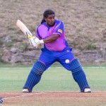 ICC Americas T20 World Cup Qualifier Bermuda vs Cayman Islands Cricket, August 25 2019-2796