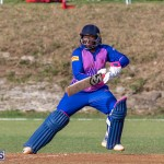 ICC Americas T20 World Cup Qualifier Bermuda vs Cayman Islands Cricket, August 25 2019-3338