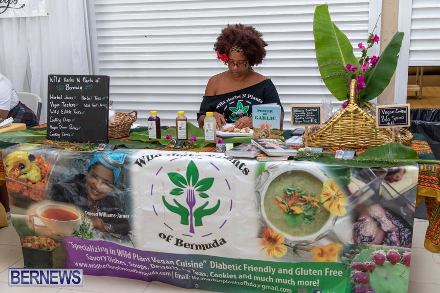Natural-Blessings-Hair-Show-Bermuda-August-18-2019-1223
